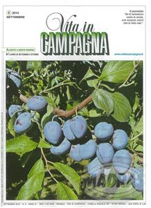 Click to view album: VITA IN CAMPAGNA SEPTEMBER/OCTOBER 2013